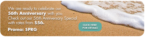 55th-anniversary-specials